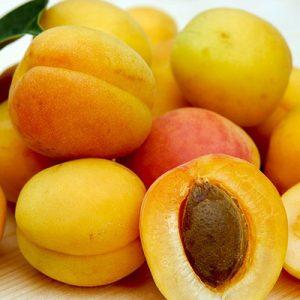 Aprikosenkernöl Bio, kaltgepresst